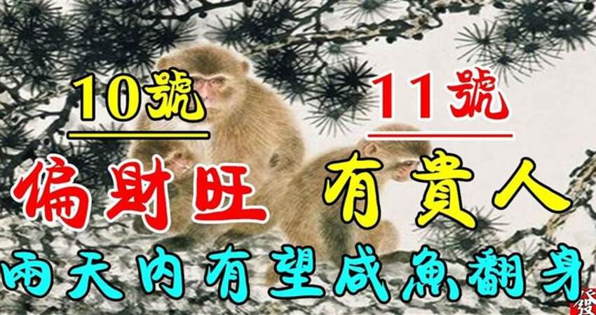 12月10.11號偏財旺有貴人的生肖,兩天內有望鹹魚翻身