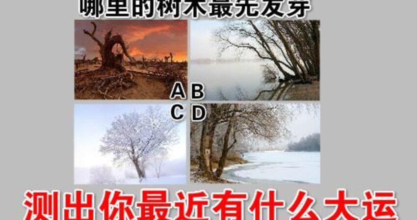 超准!心理學:哪裡的樹木最先發芽,測出你最近有什麼大運
