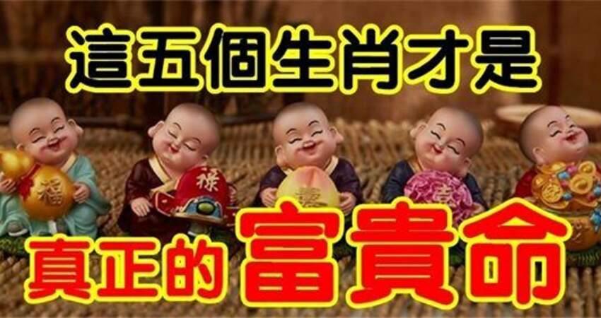 太好命!這五個生肖「福祿壽喜財五全」真正的富貴命