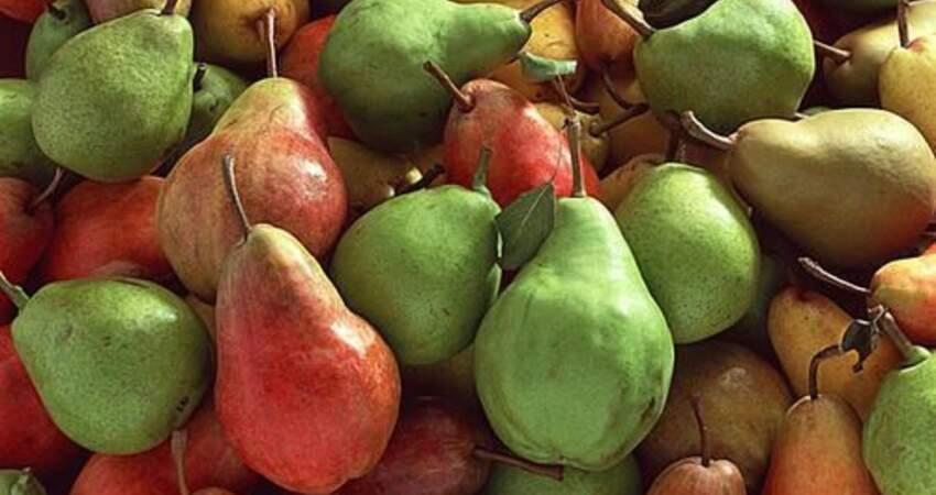 梨香甜可口,但糖尿病患者可以吃梨嗎?告訴你穩定血糖的吃法