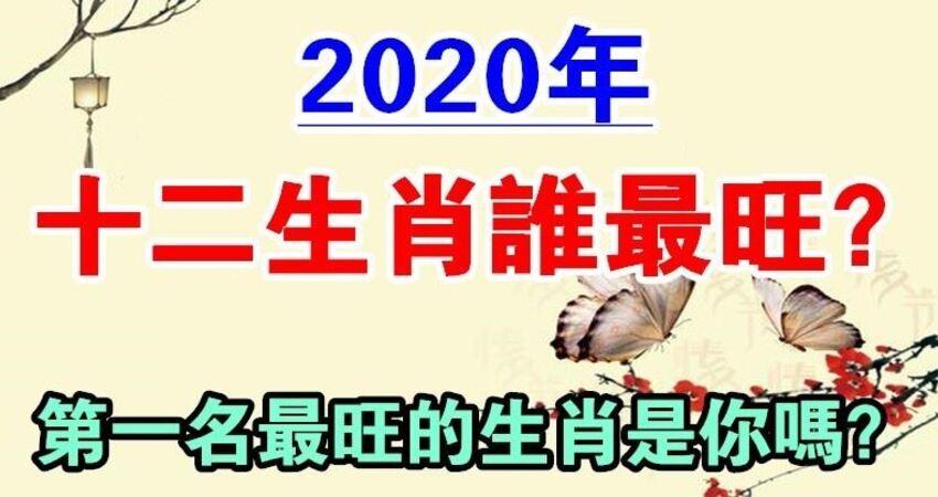2020年十二生肖誰最旺?鼠年機遇不斷、功成名就的生肖是你嗎?