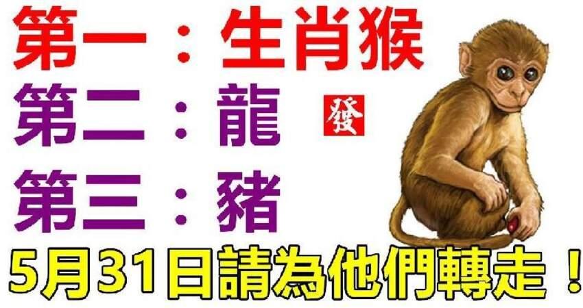 屬猴,龍,豬的人,5月31日請為他們轉走