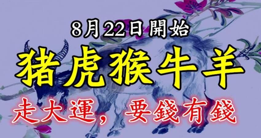 8月22日開始走大運,要錢有錢的生肖