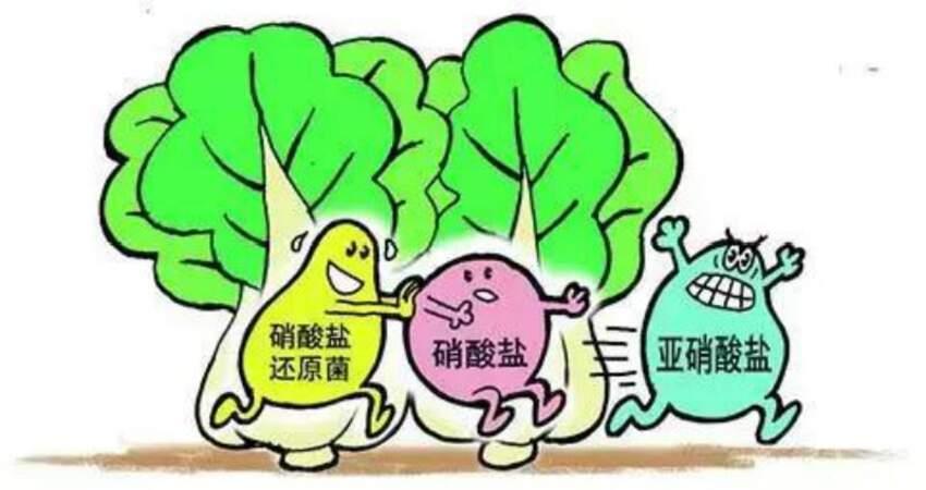 醫生從來都不吃的3種食物!天天吃等於在餵養體內的癌細胞