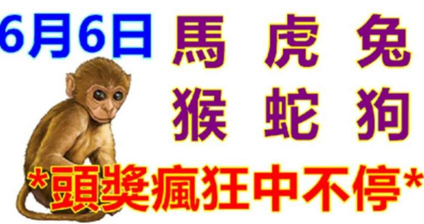 6月6號生肖運勢_馬、虎、兔大吉