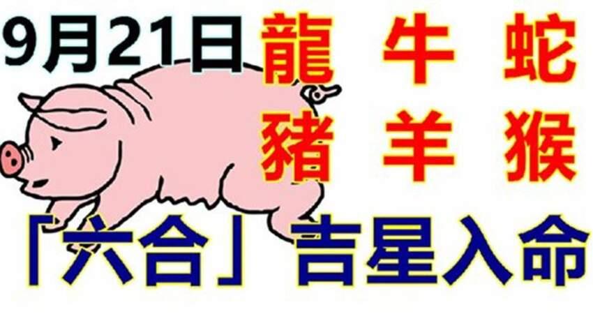 9月21號生肖運勢_龍、牛、蛇大吉