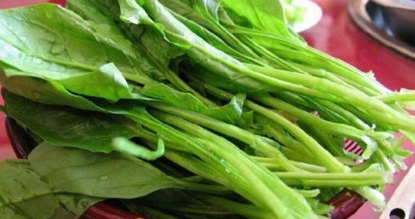 想要補血不吃紅棗吃什麼?用菠菜跟豬肝做「補鐵飲」,營養好吸收