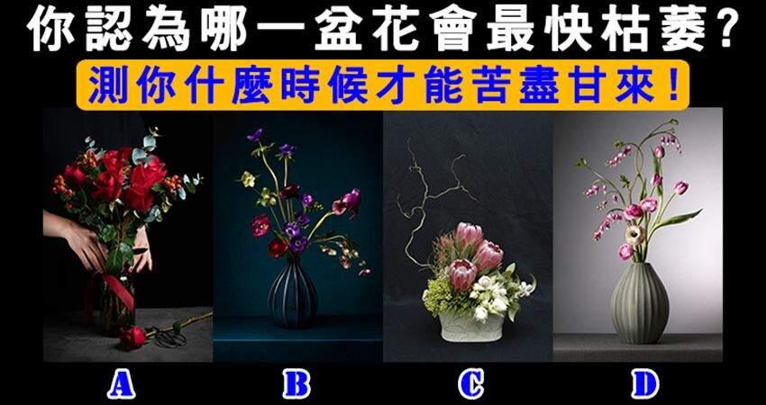 神準!你認為哪一盆花最快枯萎?測你什麼時候才能苦盡甘來!