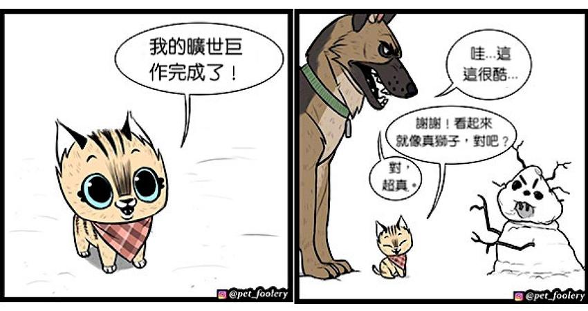 有大哥罩就是這種感覺? 超寵「軍犬與小家貓」讓網友甜到掉牙❤