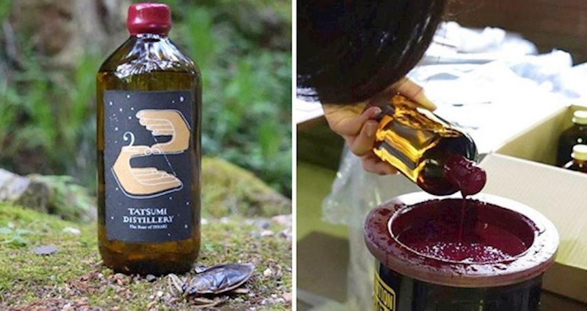 獵奇口味「蟲蟲琴酒」開賣 蟲汁新鮮現榨挑戰酒咖的膽量