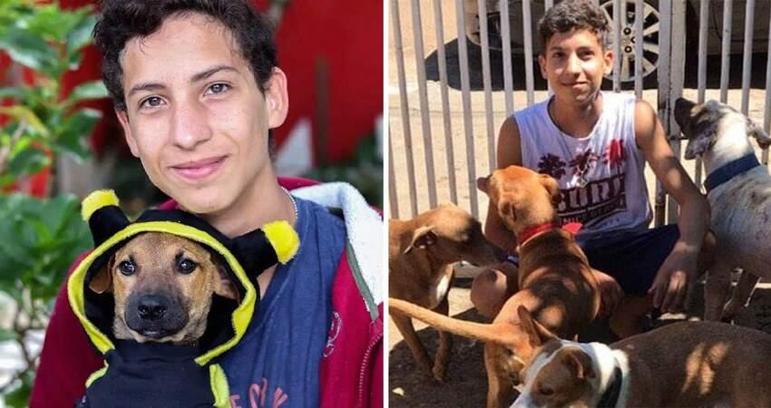 不忍牠們受苦…9歲起救援浪浪 17歲少年「創業圓夢」:開一間收容所!