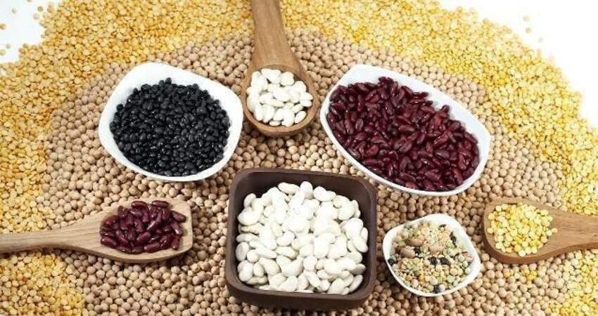 養脾胃,常用4豆,堅持每天吃一把,助你健脾養胃、補營養