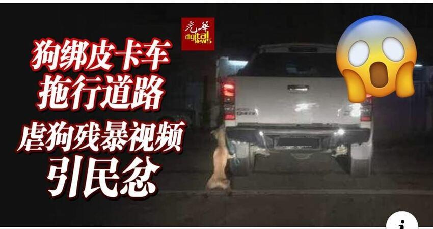 【視頻】狗綁皮卡車拖行道路虐狗殘暴視頻引民忿