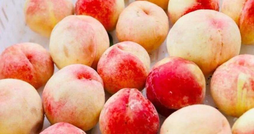 常吃桃子好處多,可黃桃、水蜜桃、蟠桃,糖尿病患者應該怎麼選?