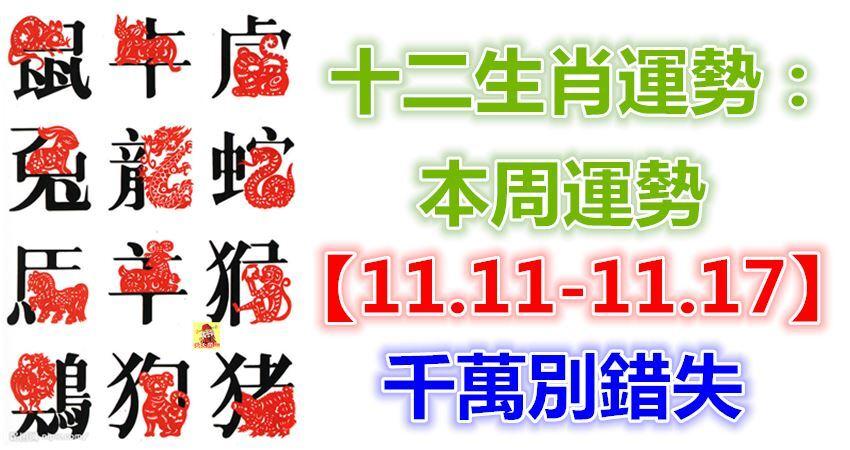 十二生肖運勢:本周運勢【11.11-11.17】千萬別錯失!