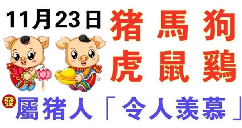 11月23日生肖運勢_豬、馬、狗大吉