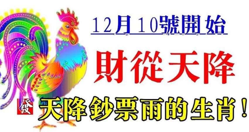 12月10號開始財從天降,天降鈔票雨的生肖