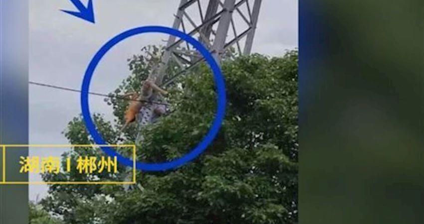 10歲童爬20米電塔觸電畫面曝光
