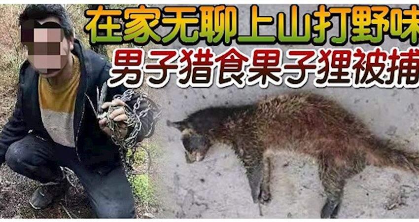 ◤武漢肺炎◢在家無聊上山打野味男子獵食果子狸被捕