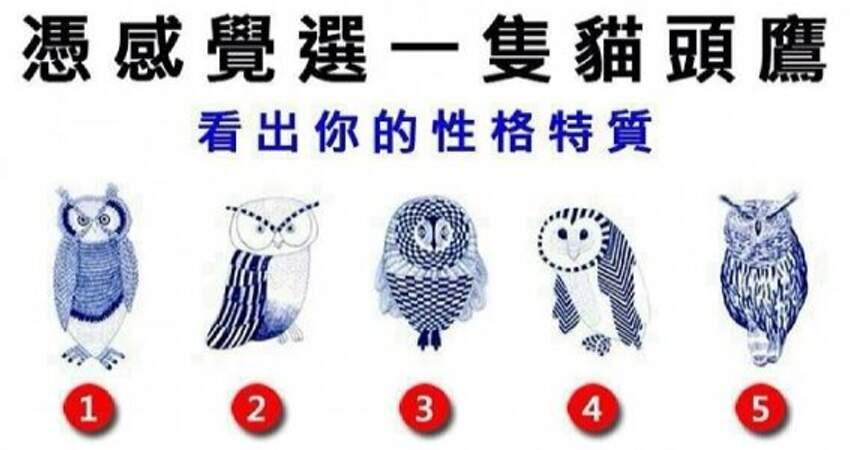 憑直覺選一隻貓頭鷹,測出你的性格特質!