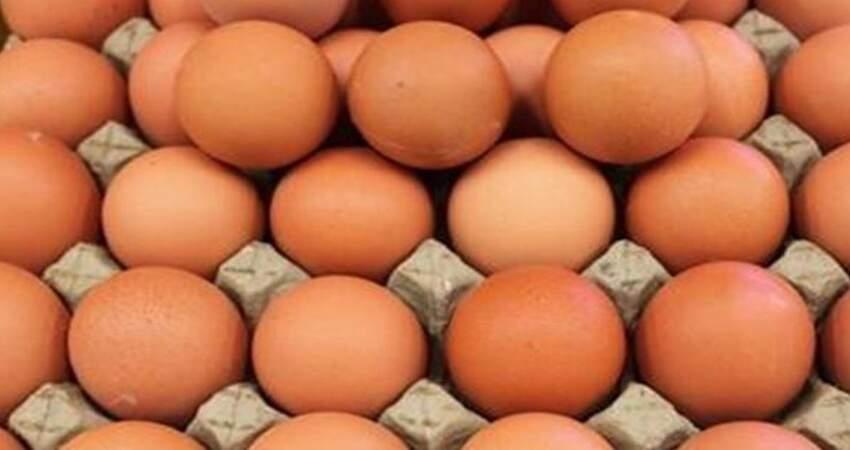 「人造雞蛋」怎麼辨別?教你4個小妙招,再也不怕買到假雞蛋了!