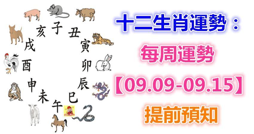十二生肖運勢:每周運勢【09.09-09.15】提前預知!