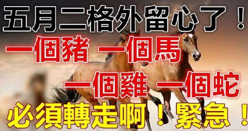 5月2日要格外留心了,一個豬,一個馬,一個雞,一個蛇必須轉啊