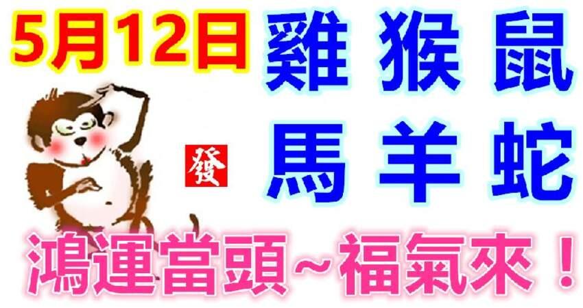 5月12日生肖運勢_雞、猴、鼠大吉