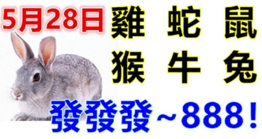5月28日生肖運勢_雞、蛇、鼠大吉