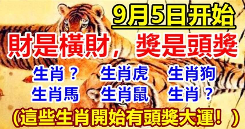 9月5日開始有頭獎大運的生肖,財是橫財,獎是頭獎