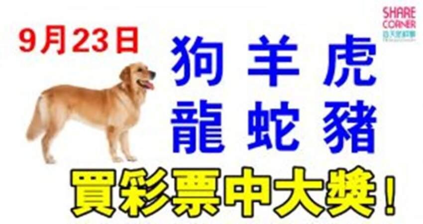 9月23日生肖運勢_狗、羊、虎大吉
