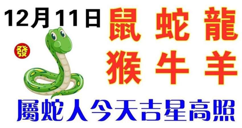 12月11日生肖運勢_鼠、蛇、龍大吉