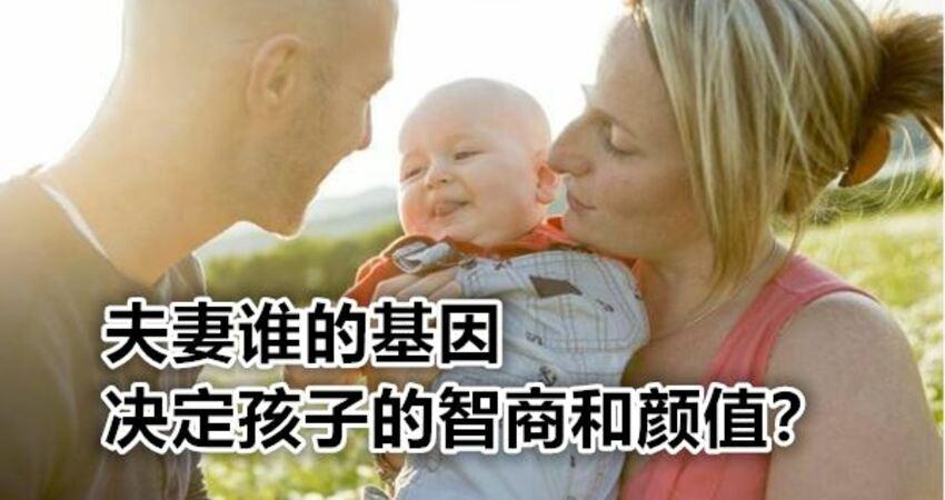 夫妻誰的基因決定孩子的智商和顏值?別糾結,看完或許會清楚