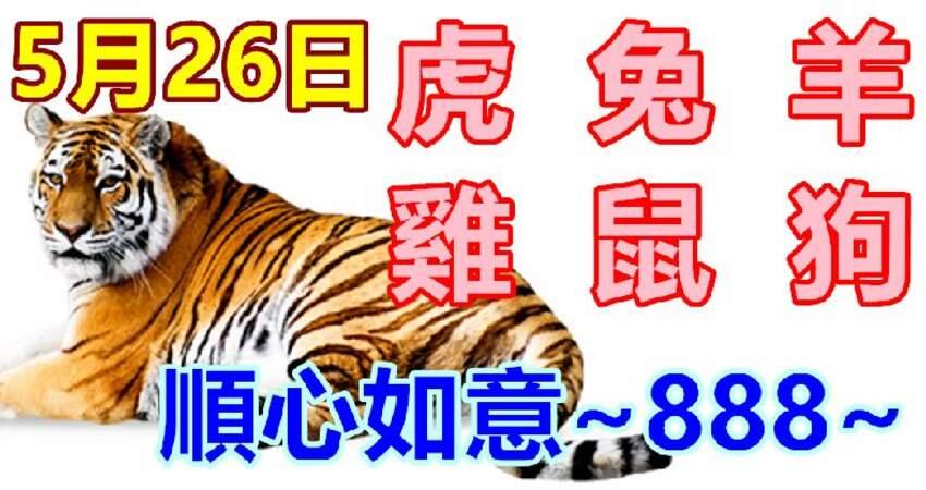 5月26日生肖運勢_虎、兔、羊大吉
