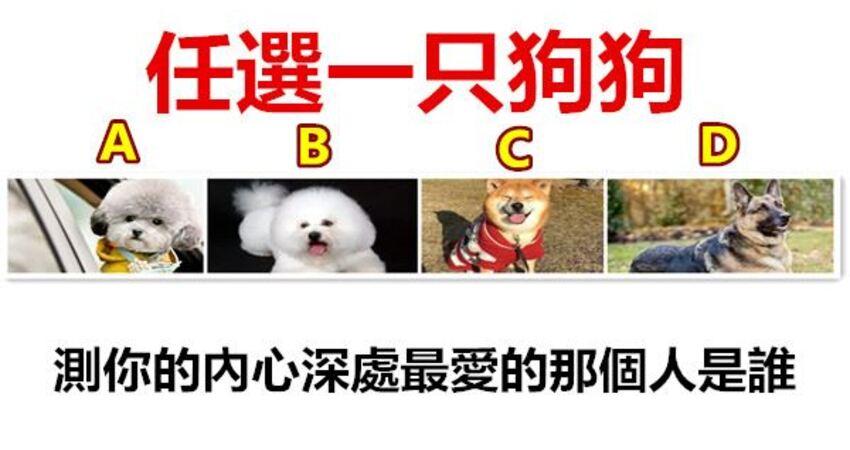 任選一隻狗狗,測你的內心深處最愛的那個人是誰