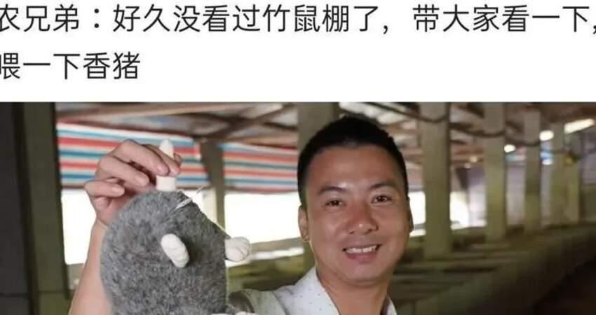 時隔9個月,因疫情消失的「竹鼠」,再次出現在華農兄弟的影片中