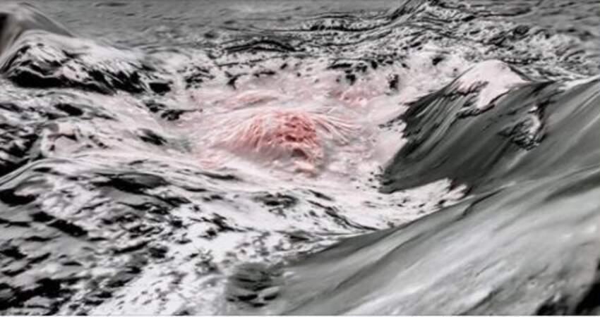 離地球這麼近!火星、木星間小行星「發現海洋」 影像傳回地球:可能孕育生命!