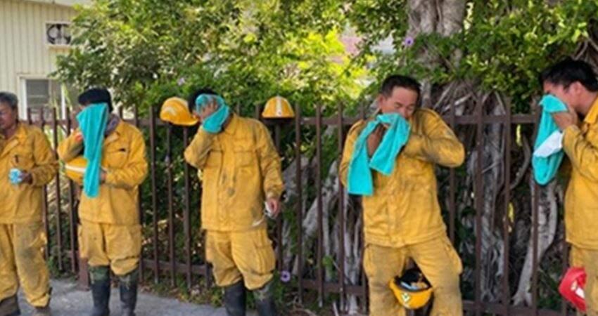 NCC專委「火燒玉山」12天撲滅!林務局貼出7照片