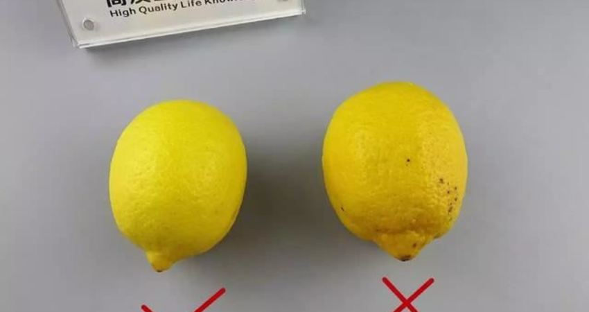 原來檸檬水要這樣泡才更有效更好喝,泡錯了喝再多也沒用!