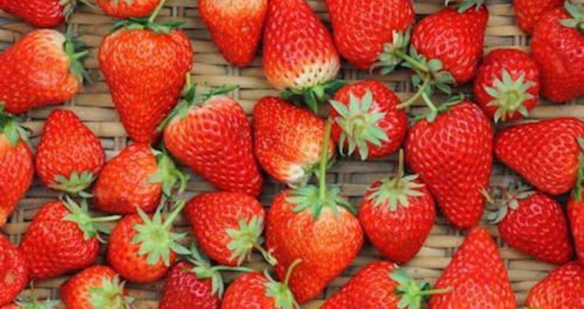 草莓竟然能減肥!19個水果的真相讓你驚掉下巴