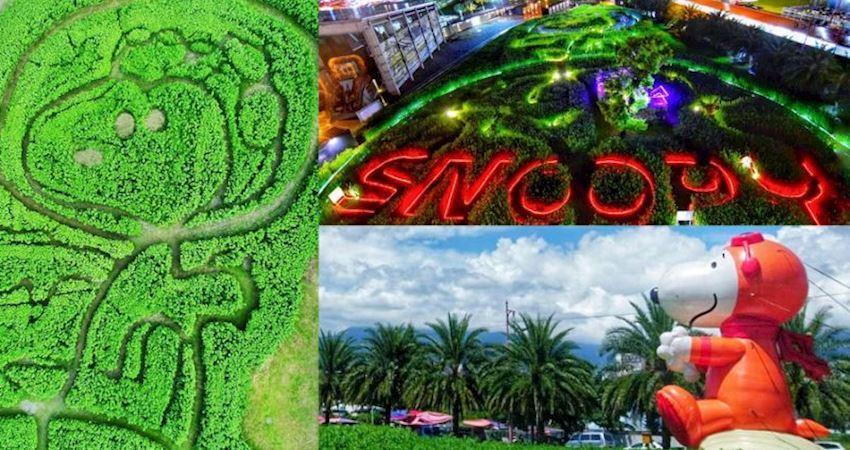 粉絲快衝!全台首座「史努比迷宮」8公尺大氣球、星光版史努比超好拍