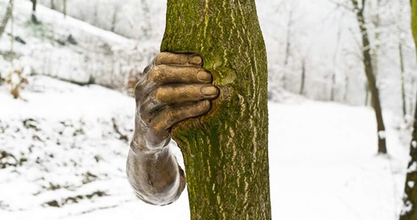 森林中出現「握著樹的手」 1968年的雕塑作品「過50年現在才完成」
