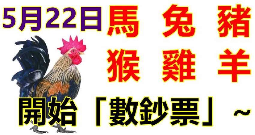 5月22日生肖運勢_馬、兔、豬大吉