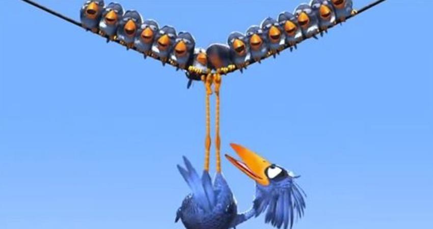 傷害別人終會回到自己身上!小鳥集體嫌棄大鳥「聯手擠下他的位子」 下一秒「誰都保不住位子」萬人反思