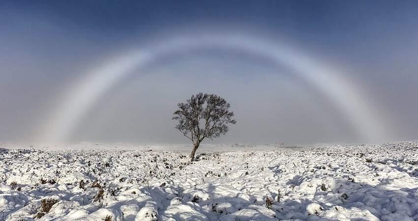 顏色被吃掉?攝影師拍「雪地純白彩虹」44年未見 NASA認證:是罕見奇景