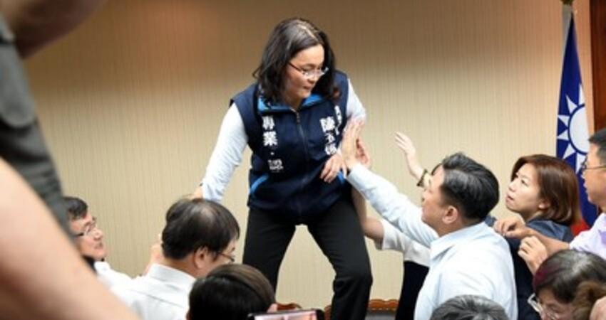 綠委秀影片指陳玉珍製造對立 要求她道歉