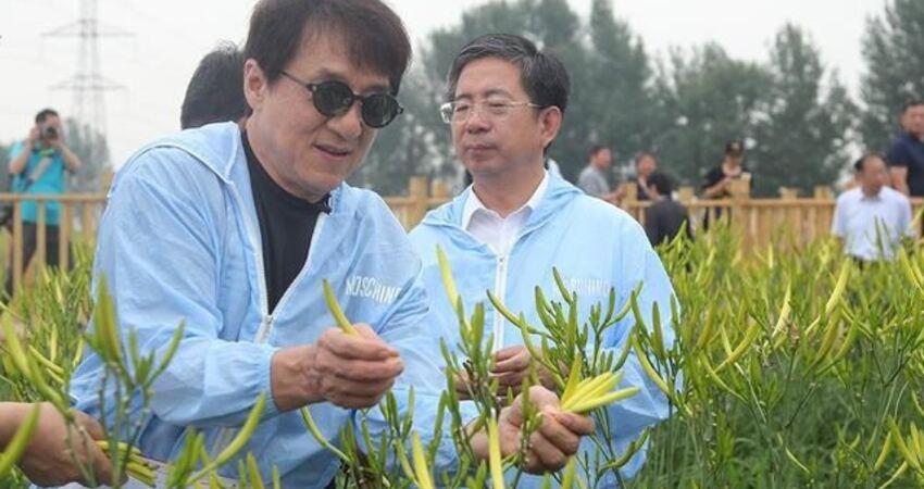 成龍呼籲成立基金保護長城,每人捐一塊錢,自己願意捐出100萬