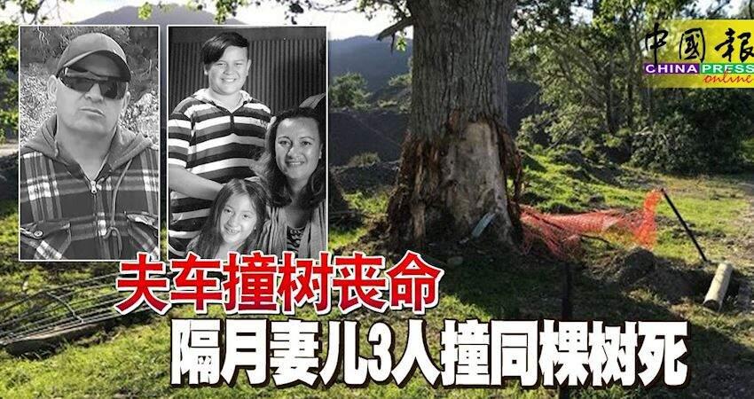 夫車撞樹喪命隔月妻兒3人撞同棵樹死