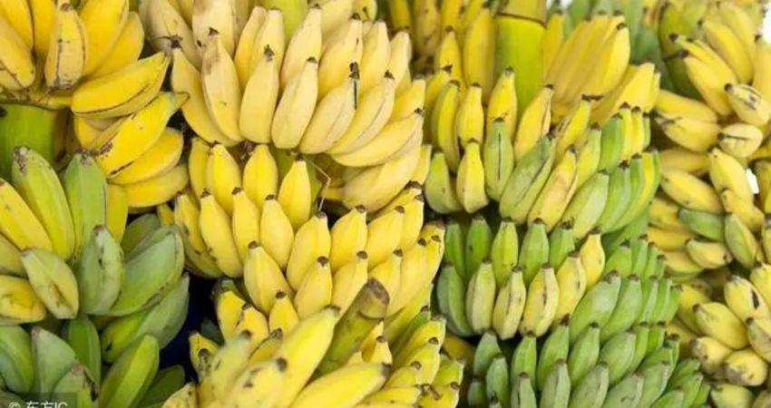 吃香蕉可以緩解便秘?這些年你可能都錯了