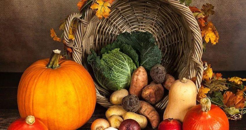 多吃這些食物,延年益壽抗衰老,省錢又有效!